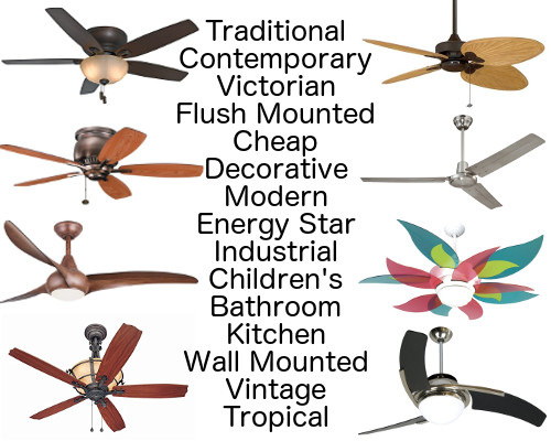 Every ceiling fans all the information and advice you ever click for more aloadofball Images
